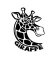 giraffe black sign vector image vector image