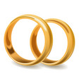 gold shiny pair of wedding rings stand on ribs vector image vector image