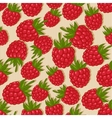 raspberries seamless pattern vector image vector image
