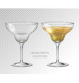 realistic cocktail margarita vector image