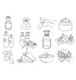 set of line spa icons sketch vector image
