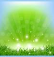 spring sunburst poster vector image vector image