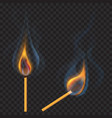 burning matches vector image