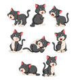 collection cute cat with various posing vector image