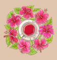 cup of hibiscus tea vector image