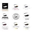 eyelash extension banner template for makeup and vector image vector image