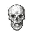 human skull in vintage gothic style engraving vector image