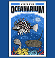 oceanarium lionfish moray eel stingray vector image