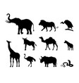 silhouettes african animals nature africa vector image