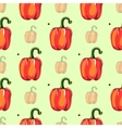 Red Pepper Seamless Pattern vector image