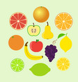 set of colorful cartoon fruit icons whole and vector image