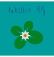 flat on background water lily vector image
