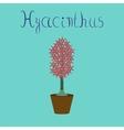flat on stylish background Hyacinthus vector image vector image