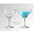 realistic cocktail margarita vector image