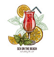 sex on the beach cocktail with mint and orange vector image