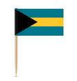 flag bahamas vector image