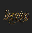 handwritten phrase opening on black background vector image