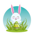 happy rabbit with easter egg in the grass vector image
