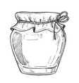 mason jar freehand pencil drawing vector image