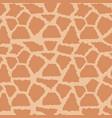 animal skin print pattern fur texture vector image vector image
