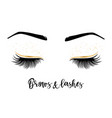 brows and lashes lettering vector image vector image