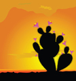 cactus black with pink flower vector image vector image