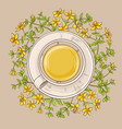 cup of tutsan tea vector image vector image
