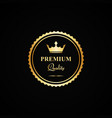 gold premium quality badge vector image