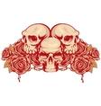 human skulls and rose vector image