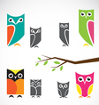 group of owls and branch vector image