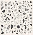 abstract seasonal doodles vector image vector image