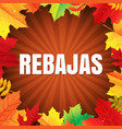 autumn rebajas poster with leaves vector image vector image