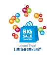 bag gift big sale special offer vector image