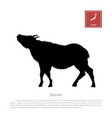 black silhouette of a japanese serow vector image vector image