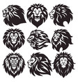 lion head logo set premium collection vector image vector image