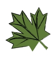 maple leaf green sign canadian sketch vector image vector image