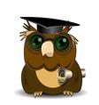 Owl scientist vector image vector image