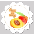 Sticker template Healthy and fresh peach vector image