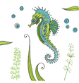 Tropical Seahorse background vector image