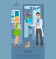 veterinary consultation poster template vector image vector image