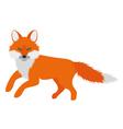 beautiful fox vector image