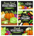 fresh vegetable food chalkboard banners cartoon vector image vector image