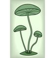 Fungi vector image vector image