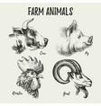 hand drawn sketch farm animals heads portraits vector image