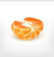 ripe half tangerine vector image vector image