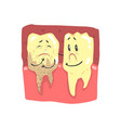 cute cartoon healthy and decayed teeth characters vector image vector image