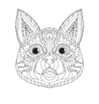 entangle stylized cat sketch for tattoo or t vector image