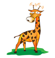 Funny giraffe on grass vector image