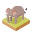 Isometric Gray Elephant vector image vector image