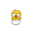 newborn easter baby chicken character in egg shell vector image vector image